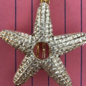 Jewelry - Star fish pearl cage